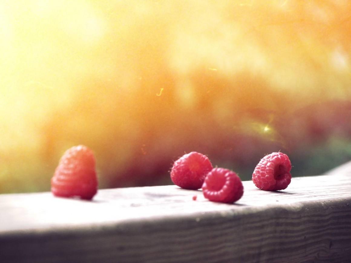 berries copia